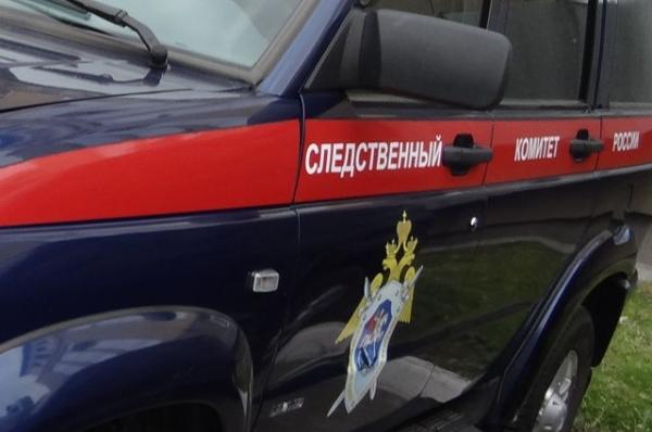 СК: в Нижегородской области школьница ударила ножом своего отца