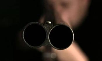 В Нижегородской области мужчина расстрелял собак из окна автомобиля