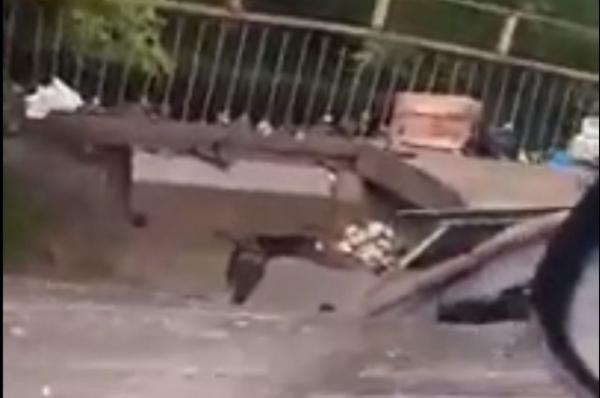 В Нижнем Новгороде частично обрушился мост возле радиорынка