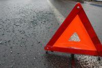 Лось разбил стекло и помял дверь «Жигули» на дороге в Шатковском районе