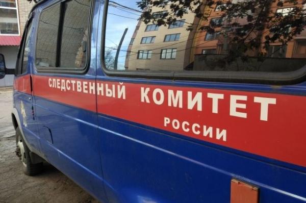 В Нижнем Новгороде в мусорный бак выкинули мертвого младенца