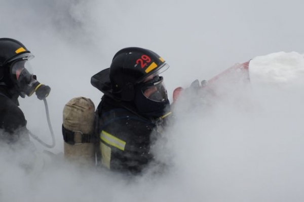 С начала года на пожарах в Нижегородской области погибло 176 человек
