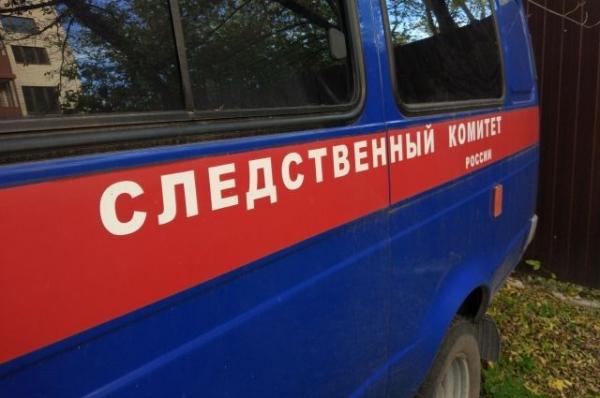 В Нижегородской области многодетная мать задушила новорожденного сына