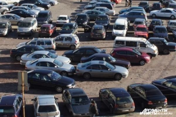 На территории Мещерского озера появится парковка для болельщиков ЧМ-18