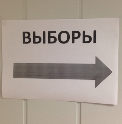 Общественная палата области подвела итоги работы по мониторингу выборов президента РФ