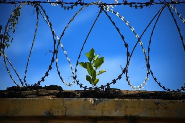 14 лет тюрьмы получил нижегородец за сексуальное насилие над дочерью друга