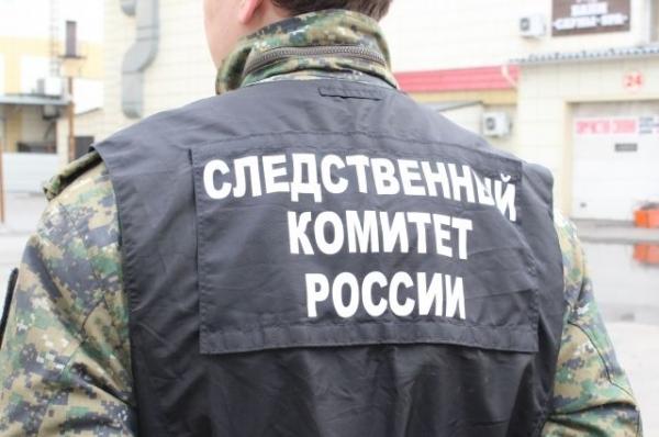 В Нижнем Новгороде нашли тела женщины и ее 7-месячного ребенка