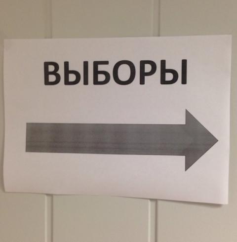 Родин выдвинут «Яблоком» на довыборы депутатов Госдумы