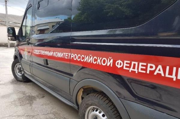 В Дзержинске подростка будут судить за изнасилование школьницы