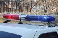 В Нижегородской области спортсменку ХК «СКИФ» сбил мотоциклист