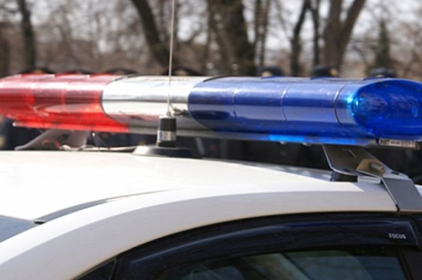 В Городце автомобиль сбил двух девочек на пешеходном переходе