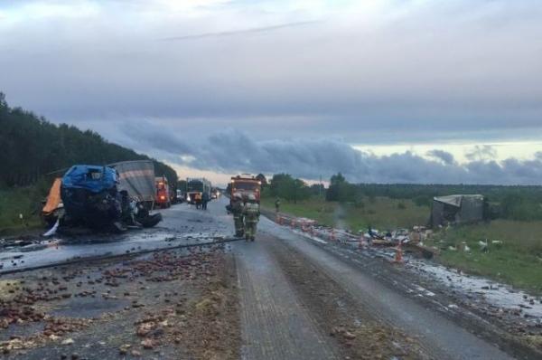 Два человека погибли в ДТП с грузовиками в Воротынском районе