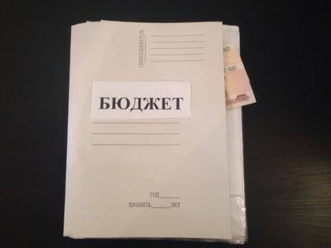 Бюджет Нижегородской области можно назвать умеренным или бюджетом стабилизации - Яшина