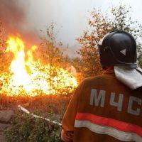 Максимальный уровень пожароопасности установлен в регионе