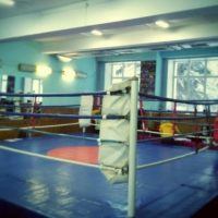 Нижний Новгород примет чемпионат мира по бирманскому боксу