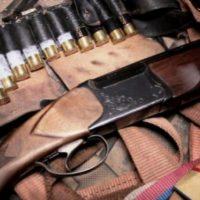 В Нижегородской области изъято более 400 единиц оружия