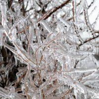 МЧС: в ледяной дождь накроет Нижний Новгород 8 ноября