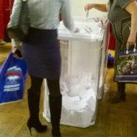 Алексеев лидирует по итогам голосования в Балахнинском и Володарском районе