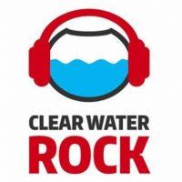 Названы рок-группы, которые откроют фестиваль «Рок чистой воды — 2016»