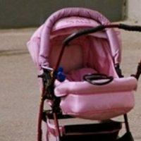 Кошка задушила двухмесячного ребенка в Нижегородской области