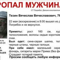 В Нижегородской области разыскивают 76-летнего Вячеслава Тезина