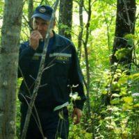 Бабушка с внуком пропали в лесу в Нижегородской области