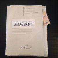 Никитин внес в Заксобрание проект поправок в бюджет