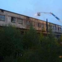 В Починковском районе сгорел телятник, животных спасли