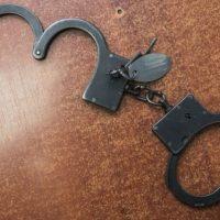 Задержана жительница Дзержинска, укусившая и избившая судебных приставов