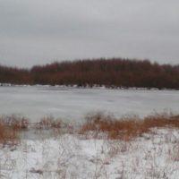 В Нижегородской области пока не нашли тела погибших рыбаков
