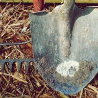 Житель Выксунского района убил отчима и закопал его труп в огороде