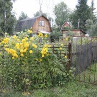 В Нижнем Новгороде задержан серийный домушник-бомж