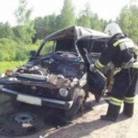Двое взрослых и трое детей погибли в ДТП в Лысковском районе