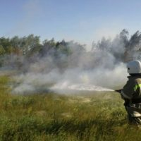 За 2 дня в регионе произошло 20 загораний сухой травы