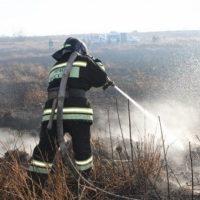 Пал травы угрожает нескольким деревням в Нижегородской области
