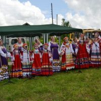 Фестиваль народной музыки «Как от ветки родной…» в Дальнеконстантиновском районе