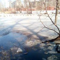 В Нижнем Новгороде спасли провалившегося под лед рыбака