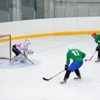 Нижегородскую федерацию хоккея с мячом возглавил Вячеслав Рябов