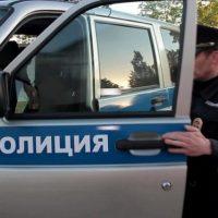 В Нижнем Новгороде задержана искусавшая полицейского нетрезвая женщина