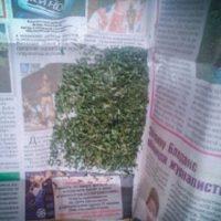 17-летнего студента со «спайсами» задержали в Арзамасе