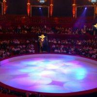 Нижегородский цирк оштрафован из-за падения эквилибриста
