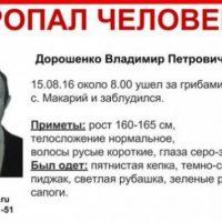 Пропавшего в лесу Владимира Дорошенко ищут в Варнавинском районе
