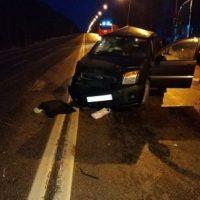 В Нижегородской области в ДТП на трассе М-7 пострадали двое детей