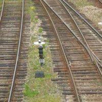В Нижегородской области локомотив протаранил иномарку