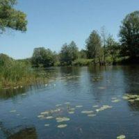 Следователи выясняют обстоятельства гибели подростка в озере в Нижнем