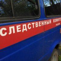 Жительница Нижнего Новгорода зарезала двухлетнего сына