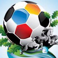 В Нижнем Новгороде стартует набор волонтеров на ЧМ по футболу
