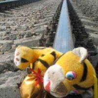 Поезд «Москва — Нижний Новгород» насмерть сбил двух подростков