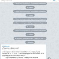 Daily Telegram: Мызинский мост, дело Бочкарёва и падение рейтинга Никитина
