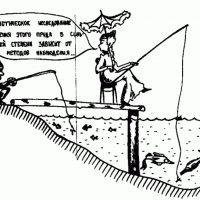 Шершавым языком Росстата